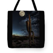 By The Light Of The Moon Tote Bag