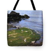 By The Shoreline Tote Bag