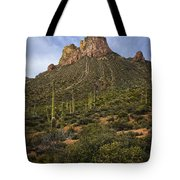 Byous Butte Tote Bag