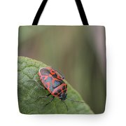 Cabbage Shield Bug Tote Bag
