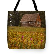 Cabin On Grand Mesa Tote Bag