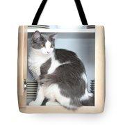 Cabinet Cat Tote Bag