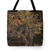 Cacti Along The Garden Wall Tote Bag