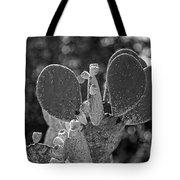 Cacti Bokeh Tote Bag