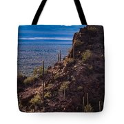 Cacti Covered Rock At Tucson Mountains Tote Bag