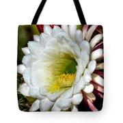 Cacti Flora Tote Bag
