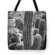 Cacti Habitat Bw Tote Bag by Kelley King