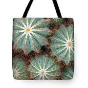 Cactus Family 2 Tote Bag