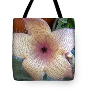 Stapelia Gigantean Flower Tote Bag