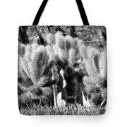 Cactus In Bw Tote Bag