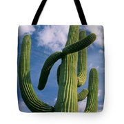 Cactus In The Clouds Tote Bag