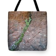 Cactus In The Rocks Tote Bag