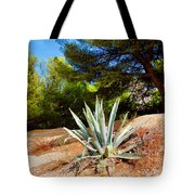 Cactus On A Rocky Coast Of French Riviera Tote Bag
