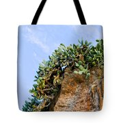 Cactus On A Cliff Tote Bag