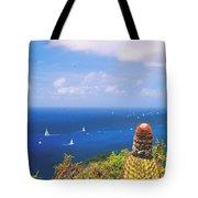 Cactus Overlooking Ocean Tote Bag
