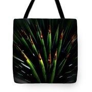 Cactus Spines Tote Bag