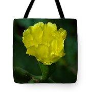 Cactus Splendor Tote Bag