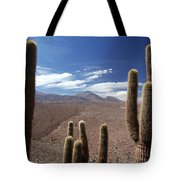Cactus With The Andes Mountains Tote Bag