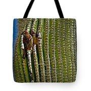 Cactus Wren With Offspring In A Saguaro Cactus In Tucson Sonoran Desert Museum-arizona Tote Bag