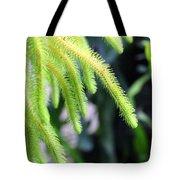Cactus2750 Tote Bag