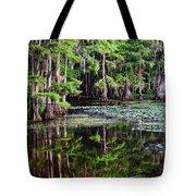 Caddo Dawn Tote Bag