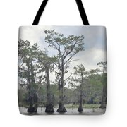 Caddo Lake Cypress Trees Tote Bag