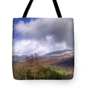 Cades Cove First Dusting Of Snow II Tote Bag by Debra and Dave Vanderlaan