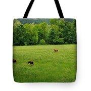 Cades Cove Horses Tote Bag