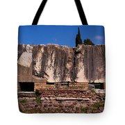 Caesaria Principi Tote Bag