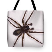 Caffeine Crazed Arachnoid Tote Bag