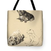 Cairn, Sealyham And Bull Terrier, 1930 Tote Bag