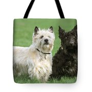 Cairn Terrier And Scottish Terrier Tote Bag