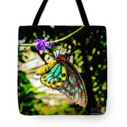 Cairns Birdwing Tote Bag