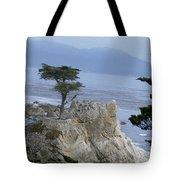 California Bonsai Tote Bag