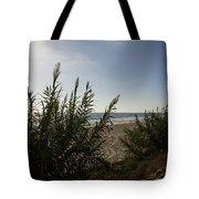 California Carlsbad Beach Hidden View Tote Bag