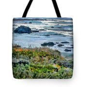 California Central Coast Near San Simeon Tote Bag