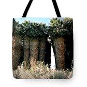 California Coachella Oasis2 Tote Bag