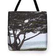 California Coast # 8 Tote Bag