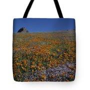 California Gold Poppies And Baby Blue Eyes Tote Bag
