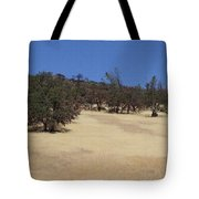 California Grass And Oak Trees Tote Bag