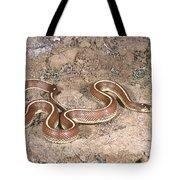 California Kingsnake Tote Bag