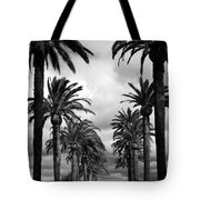 California Palms - Black And White Tote Bag