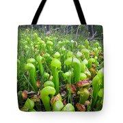 California Pitcher Plant Tote Bag