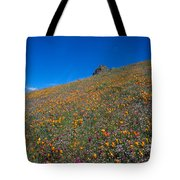 California Poppies Baby Blue Eyes And Owl Clover Tote Bag