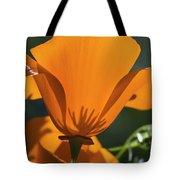 California Poppies  Eschscholzia Tote Bag