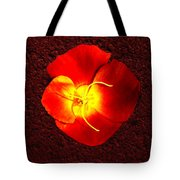 California Poppy By Nadine Johnston Tote Bag
