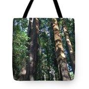 California Redwood Tote Bag