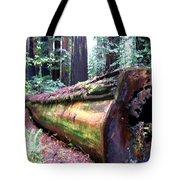 California Redwoods 2 Tote Bag