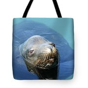 California Sea Life Tote Bag