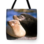 California Sea Lions Tote Bag by Mark Newman